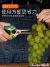 修果剪葡萄枝的專用剪刀采果翹頭稀果剪蔬果剪尖頭水果不銹鋼修枝【全館免運】