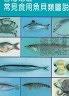 【二手書R2YB】b《臺灣地區常見食用魚貝類圖說》行政院衛生署