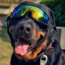 寵物狗狗眼鏡太陽防紫外線防風墨鏡