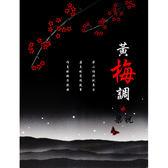 黃梅調-梁山伯與祝英台CD (10片裝)