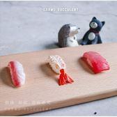 ⓒ仿真壽司 多肉微景觀 冰箱貼【A018005】