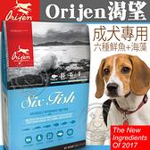 四個工作天出貨除了缺貨》Orijen 渴望》六種鮮魚犬飼料-6kg