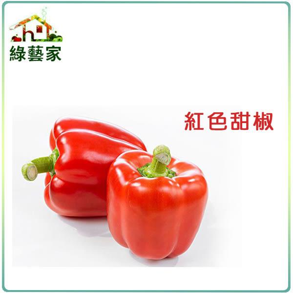 【綠藝家】大包裝G25.紅色甜椒 (紅麗星)種子20顆