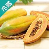 【台灣】屏東長治鮮甜木瓜1粒(700g±5%/粒)【愛買冷藏】