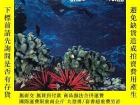二手書博民逛書店The罕見Mysterious Undersea World 英