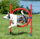 DAHJ-20 犬類敏捷訓練 寵物健身器材 寵物戶外遊戲跳圈 寵物障礙訓練 美國寵物第一品牌LIXIT®