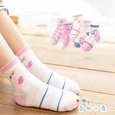 5雙 兒童襪子純棉春秋薄款男女中筒棉襪【奇趣小屋】