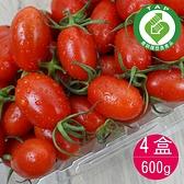 阿水伯玉女小蕃茄(600g/4盒)含運組/產銷履歷