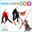 伸縮彈力繩羽毛逗貓棒 1入 (顏色隨機出貨)