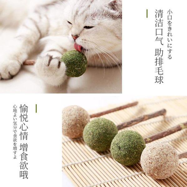 貓咪棒棒糖貓薄荷棒棒糖貓咪玩具磨牙棒潔齒逗貓棒木天蓼貓咪用品 概念3C旗艦店