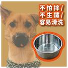 小型犬白鐵狗碗 3號 不鏽鋼寵物碗 餐具 小碗 圓碗 鳥碗 餵食盆【空間特工】