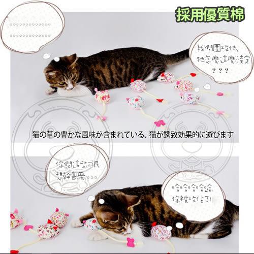 【 培菓平價寵物網 】DYY》天然貓草碎花老鼠造型貓玩具(隨機出貨)