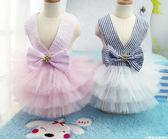 兔子衣服侏儒兔寵物兔衣服兔子用品衣服垂耳兔裙子兔兔衣服公主裙
