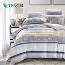 天絲 Tencel 沫夕 床包 加大三件組 100%雙面純天絲 伊尚厚生活美學
