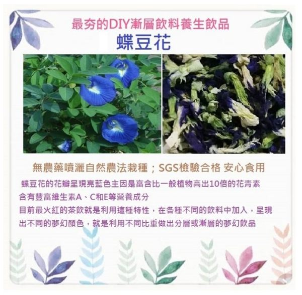 天然蝶豆花茶 /50g/包(檢驗合格)