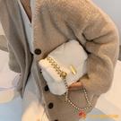 百搭小包包女秋冬時尚毛茸茸斜挎包毛絨鏈條包【小獅子】