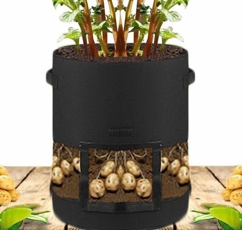 【JIS】N046 L號 不織布馬鈴薯種植袋(中透明) 花生種植袋 地瓜 番薯 芋頭 紅蘿蔔 種植袋 根莖類