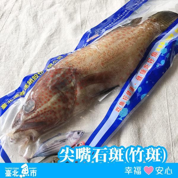 【台北魚市】  尖嘴石斑(竹斑)  380g±10%