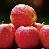 青森蜜蘋果禮盒(一盒免運)(每週三出貨一次)