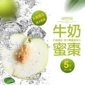 【屏聚美食】外銷精品中大-翡翠牛奶蜜棗5斤禮盒組(24±3顆)