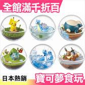 【小福部屋】日本 透明寶貝球造型食玩 皮卡丘 乘龍 卡比獸 妙蛙種子 哈克龍 伊布 6個入 第一彈