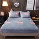 【限時下殺89折】床包 珊瑚絨床包單件法蘭絨床罩套冬季床單席夢思床墊保潔墊加厚防塵罩