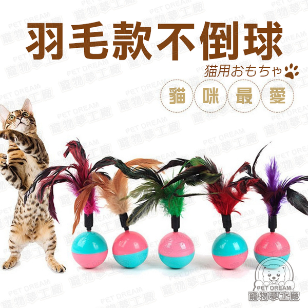 貓玩具 羽毛不倒球 貓玩具 羽毛玩具 貓玩耍 貓樂園 貓咪推薦 寵物用品 寵物玩具 貓奴必備