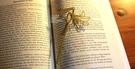 【收藏天地】創意小物*鋁合金質感書籤-百合系列 (太陽黃) / 藏書夾 生活文具 禮品 文青