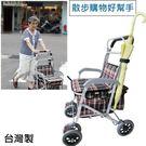散步購物車 - 有扶手及手煞車 可坐 輕鬆散步 銀髮族用品 外銷日本款 超時尚 台灣製 [ZHTW1793-902A]