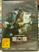 影音專賣店-H08-014-正版DVD*電影【噬血熊】-凱蒂羅威斯*派翠克路易斯