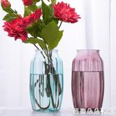 花瓶歐式簡約透明花瓶創意玻璃客廳擺件水培插花干花花器富貴竹裝飾品 芭蕾朵朵