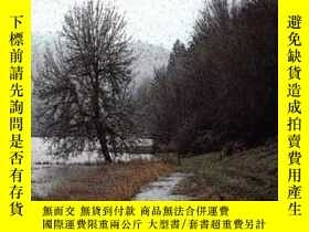 二手書博民逛書店Compensating罕見For Wetland Losses Under The Clean Water Ac