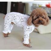 狗狗升級蕾絲四腳衣服寵物泰迪比熊雪納瑞防塵防蟲衣   蓓娜衣都