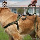中型犬大型犬狗繩狗鍊子金毛薩摩耶哈士奇胸背帶牽引繩牽引帶套裝