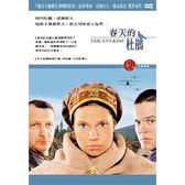 春天的杜鵑DVD