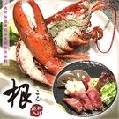 【台北】根職人料理-波士頓活龍蝦套餐
