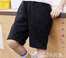 男童短褲夏裝薄款兒童純棉夏季12歲中大童外穿褲子運動中褲五分褲