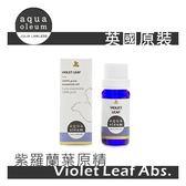 AO 紫羅蘭葉原精 5ml。Violet Leaf Abs。Aqua Oleum 英國原裝