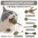 寵喵樂 貓咪薄荷《磨牙潔齒系列》貓咪磨牙/玩具 款式隨機出