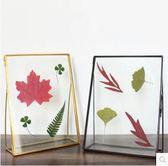 歐式復古幾何玻璃植物標本相框xx613【VIKI菈菈】