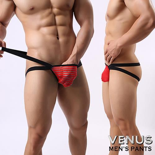 情趣用品 情趣內褲情趣睡衣VENUS 網紗條紋 男士雙丁 性感情趣 透明丁字褲 紅