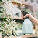 噴壺 噴水壺澆花神器 多肉園藝小型家用灑...