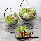 微景觀生態瓶 微景觀多肉植物組合創意肉肉盆栽【非凡】TW