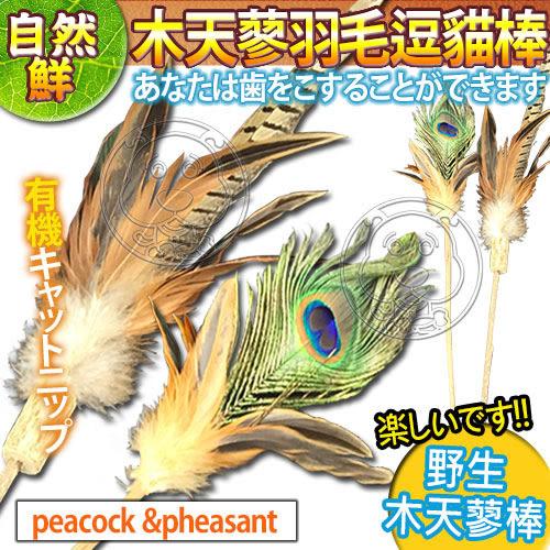 【培菓平價寵物網】自然鮮系列》木天蓼羽毛逗貓棒NF-031/32