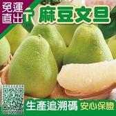 預購-家購網嚴選 台南麻豆文旦精選5斤裝/盒 (5~7顆)【免運直出】