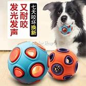 梅花腳狗狗玩具耐咬磨牙寵物大小型犬泰迪金毛訓練用品發光發聲球 快速出貨