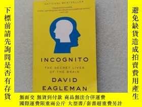 二手書博民逛書店Incognito:罕見The Secret Lives of the BrainY22264 David E