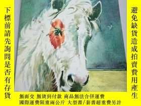 二手書博民逛書店MISTY罕見OF CHINCOTEAGUEY212829 出版