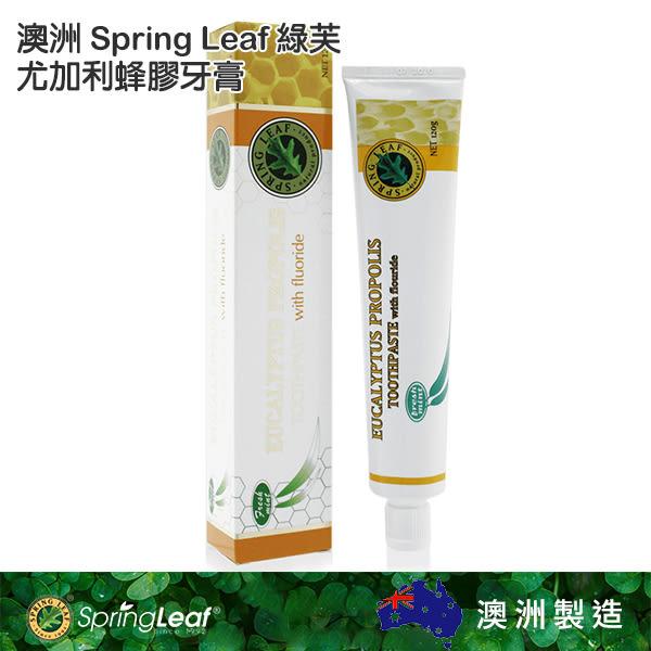 Spring Leaf 綠芙 尤加利蜂膠牙膏 120g 澳洲【YES 美妝】