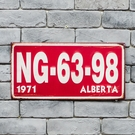 Alberta 鐵板掛飾40*20-生活工場